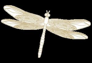 libelle-gold